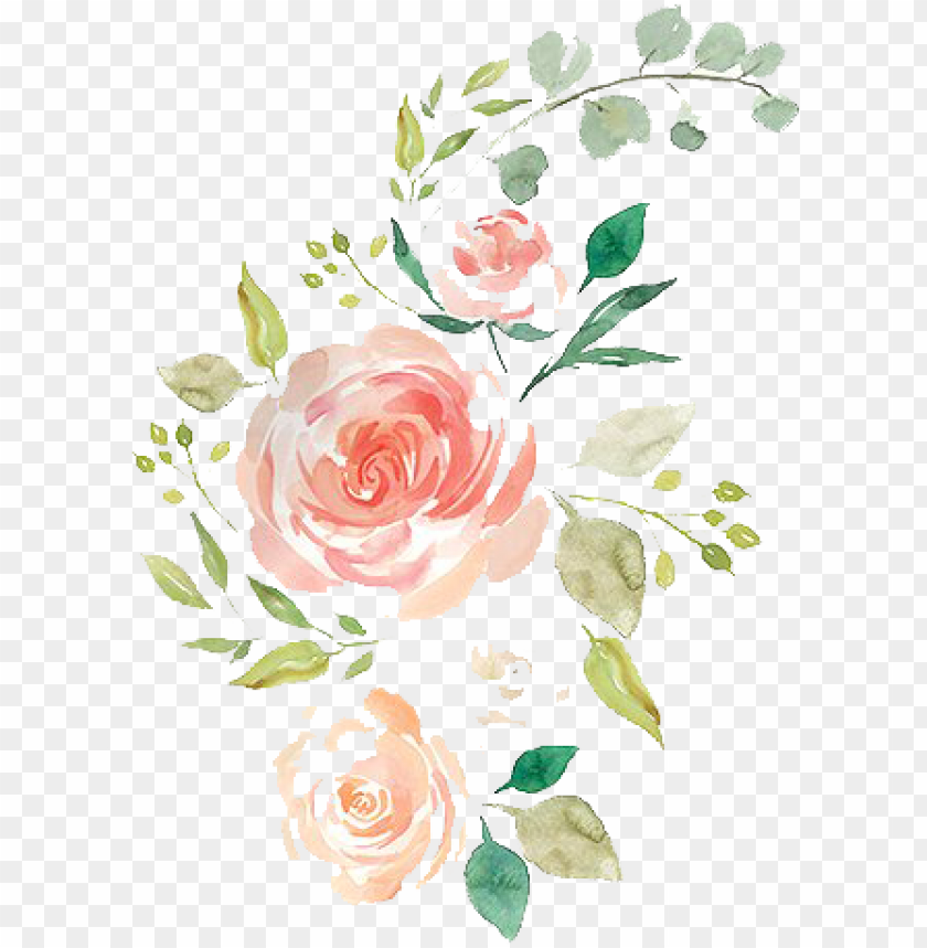 free PNG free watercolor pencil hand drawn flowers - hand drawn flowers PNG image with transparent background PNG images transparent