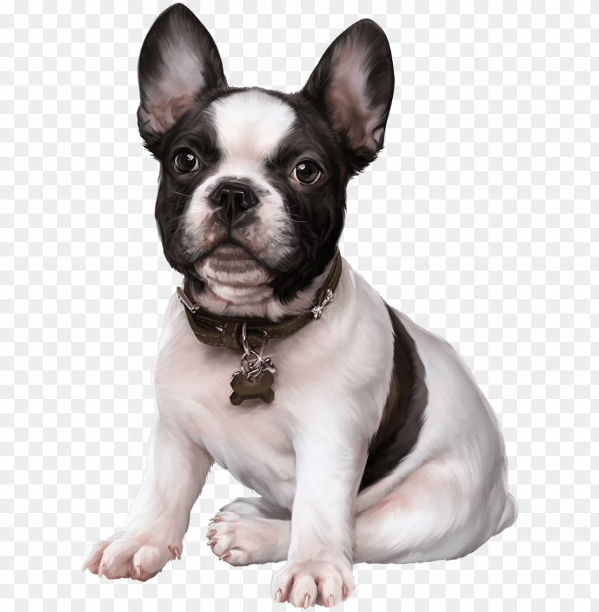 French Bulldog Puppy Images Clip Art Cute Dogs 3d Tubes Do Png Image With Transparent Background Toppng