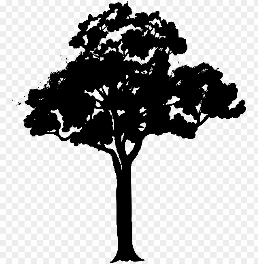 Fresh Gallery Black Tree Vector Png Cartoon Tree With Branches Png Image With Transparent Background Toppng Pine tree cartoon png clipart, like snow covered trees png,lorax trees png,flat design png. fresh gallery black tree vector png