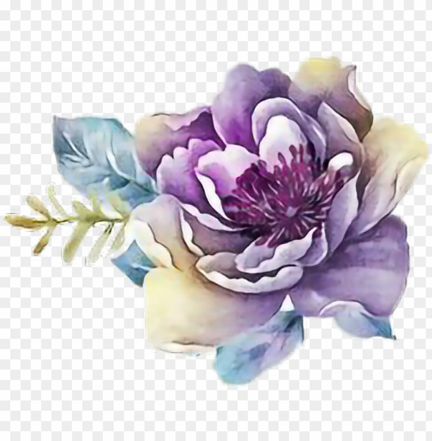 free PNG ftestickers art watercolor flower rose purple - purple flower watercolor PNG image with transparent background PNG images transparent