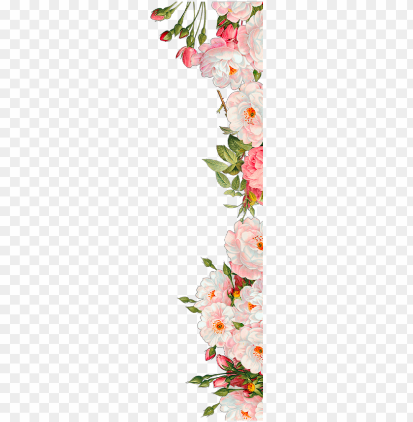 free PNG ftestickers flowers roses border pink - wedding invitation flowers PNG image with transparent background PNG images transparent