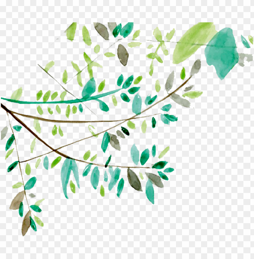 free PNG ftestickers watercolor leaves vines greenery - tree branch watercolor PNG image with transparent background PNG images transparent