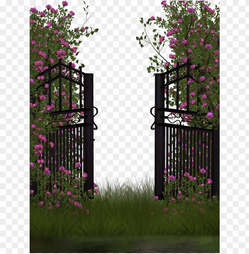 Garden Clipart Garden Roses Rose Garden Transparent Background Png Image With Transparent Background Toppng