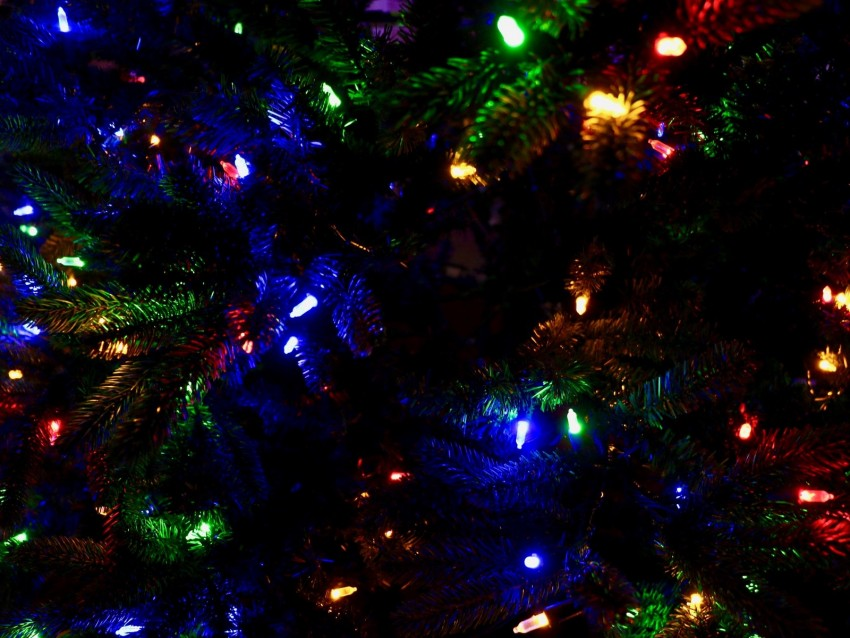 free PNG garland, tree, christmas, new year, decoration, colorful background PNG images transparent