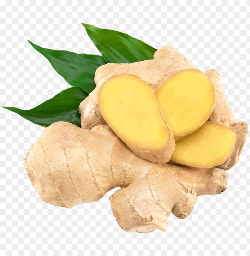 free PNG Download ginger png images background PNG images transparent