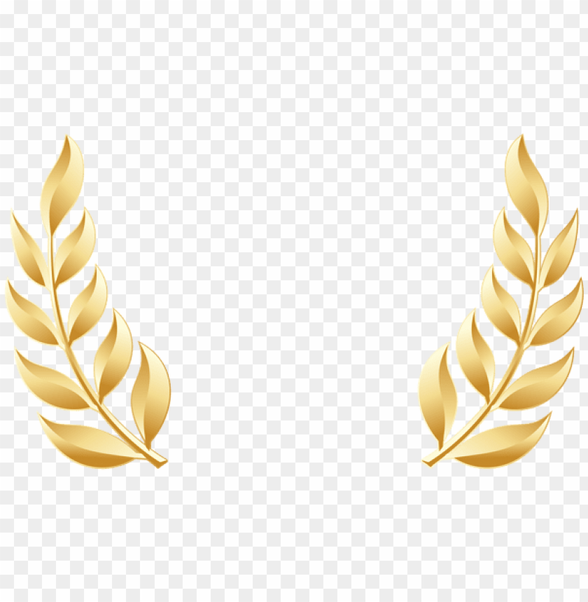 free PNG Download golden laurel leaves transparent clipart png photo   PNG images transparent