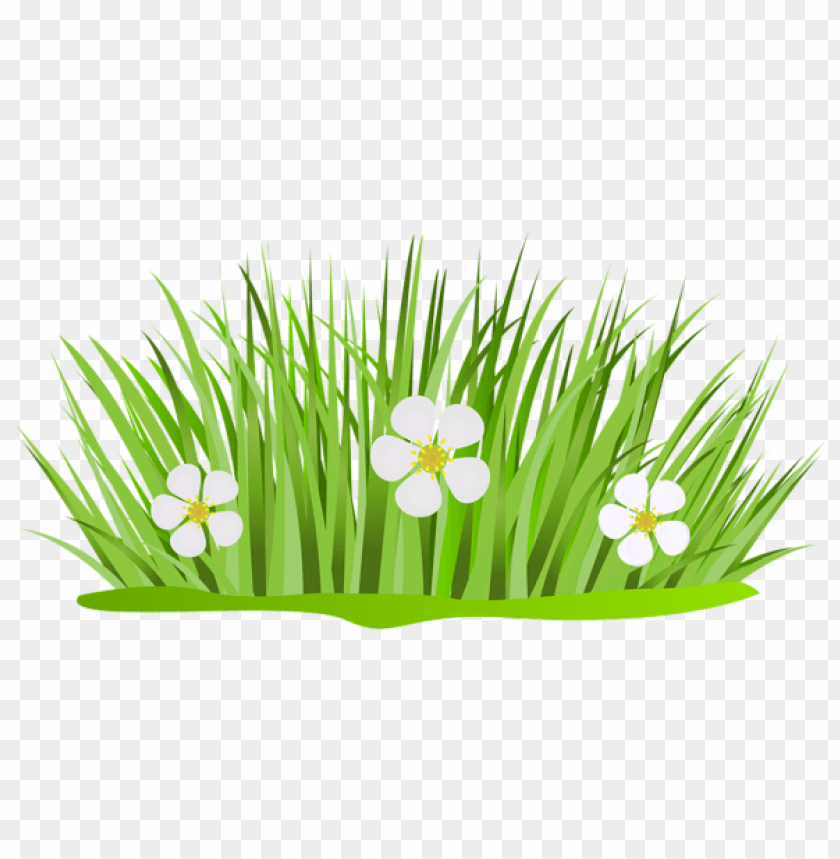 free PNG Download grass patch with flowers png images background PNG images transparent