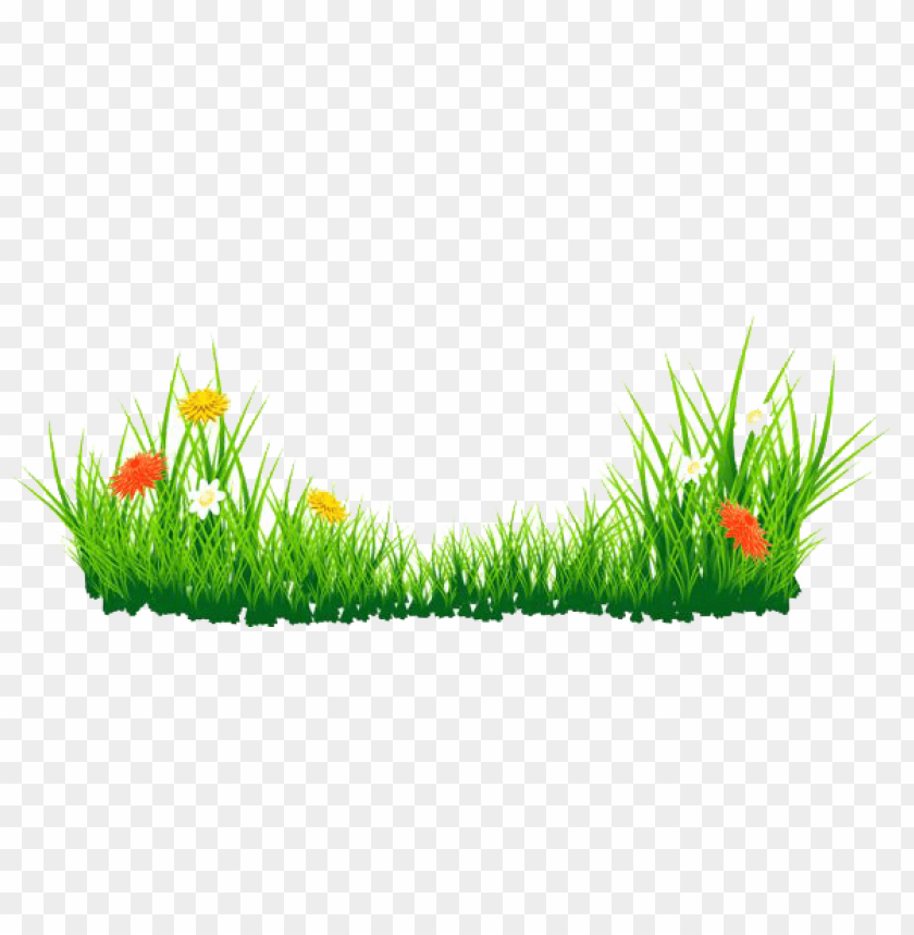 free PNG Download grass png png images background PNG images transparent