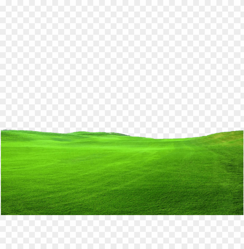free PNG Download grass png pic png images background PNG images transparent