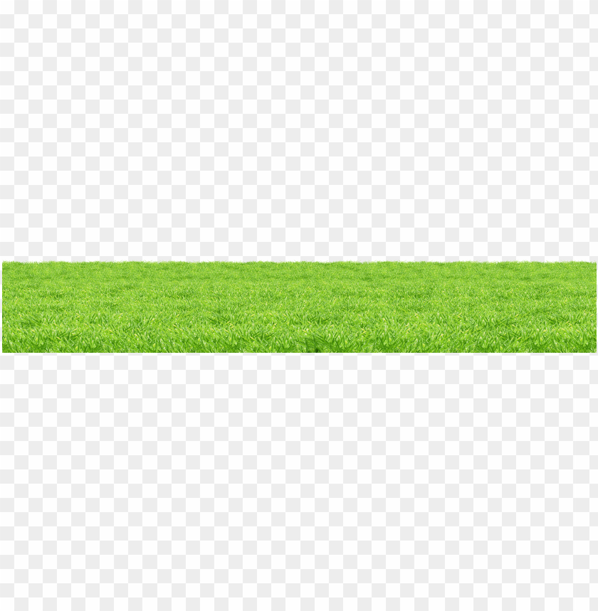 free PNG Download grass surface png images background PNG images transparent