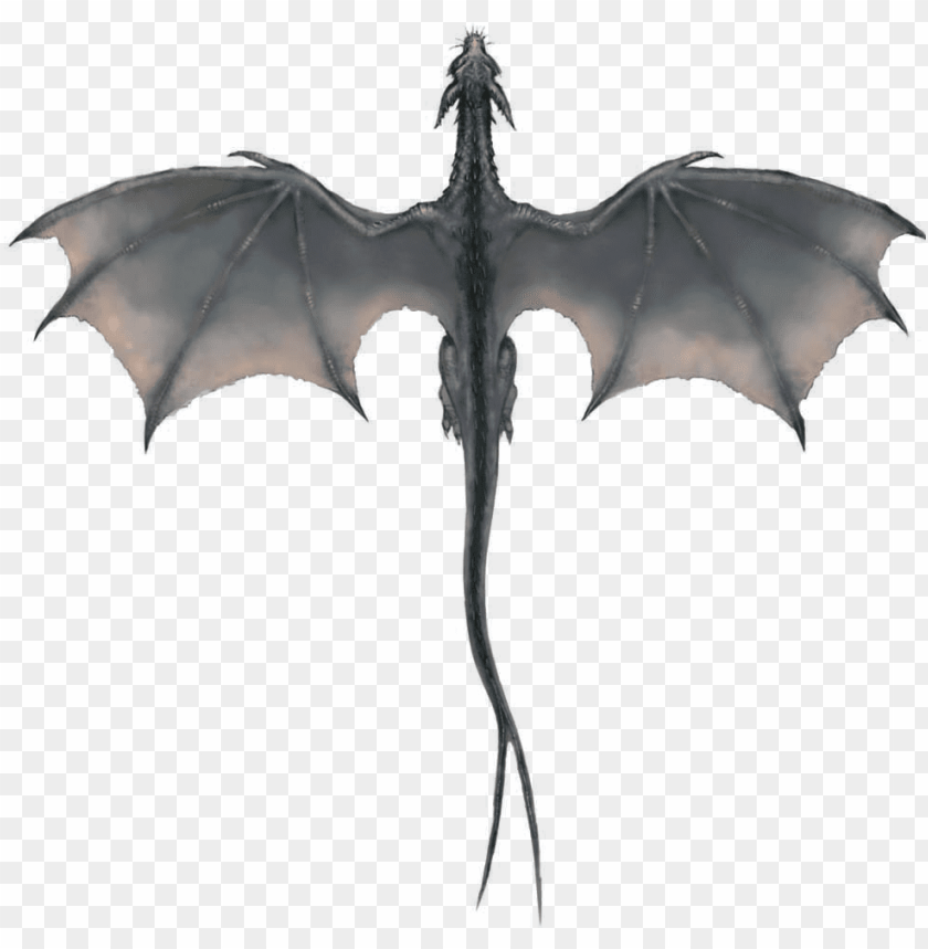 free PNG gray dragon PNG image with transparent background PNG images transparent