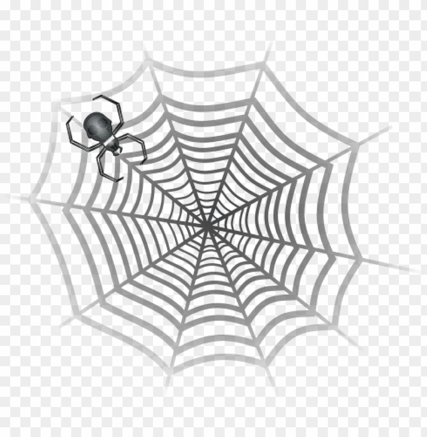 free PNG gray spider in web PNG image with transparent background PNG images transparent
