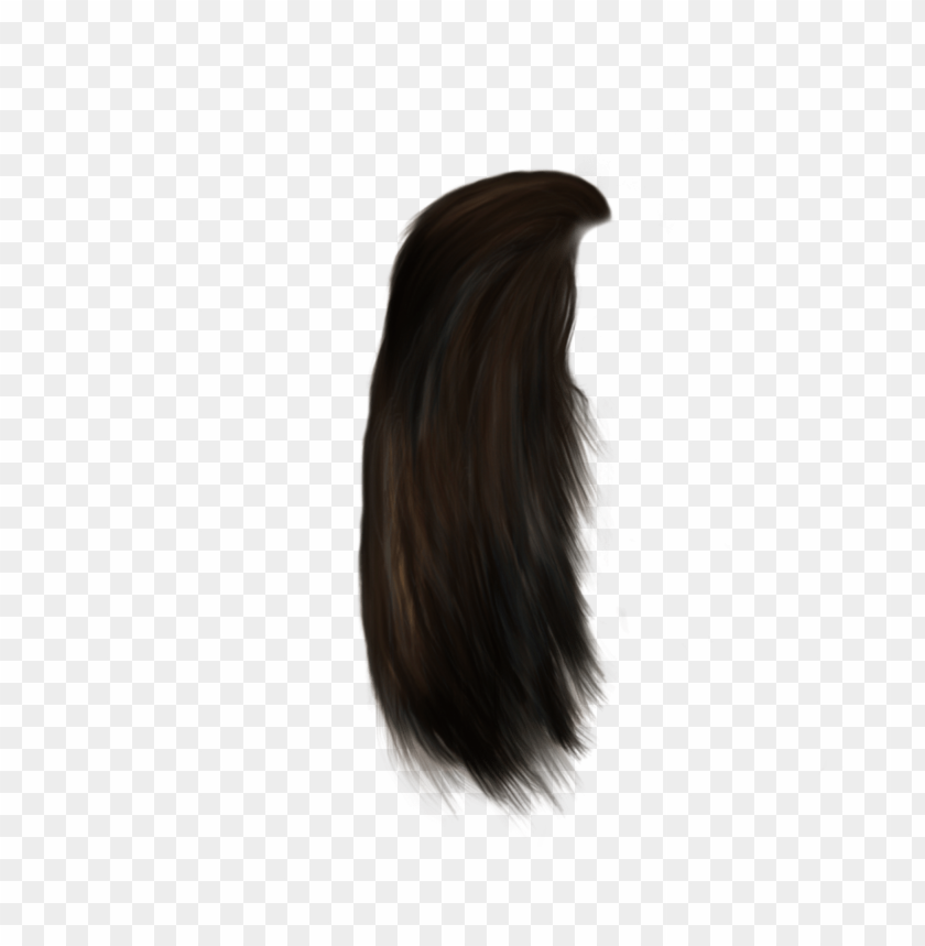 free PNG hair png - Free PNG Images PNG images transparent
