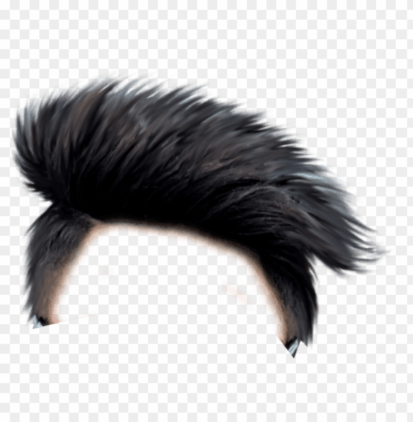 free PNG hair png hair png - background picsart hair PNG image with transparent background PNG images transparent