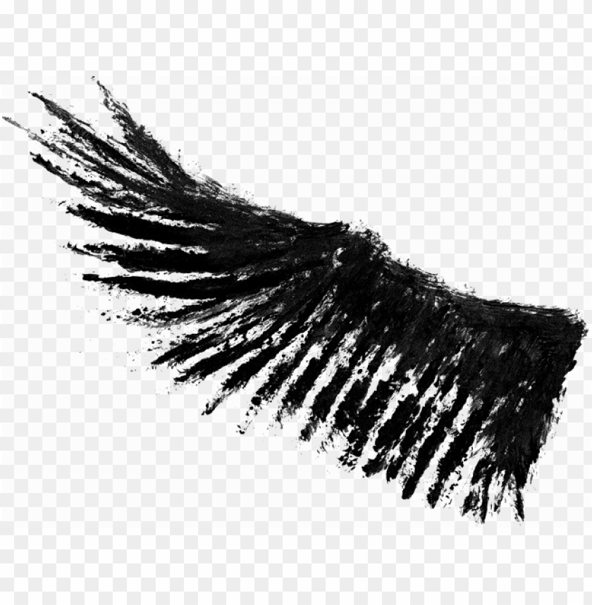 free PNG half wings png photos - wings photo in PNG image with transparent background PNG images transparent