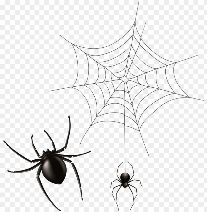free PNG halloween cobwebs clipart 7 spider web png bear - painted spider PNG image with transparent background PNG images transparent