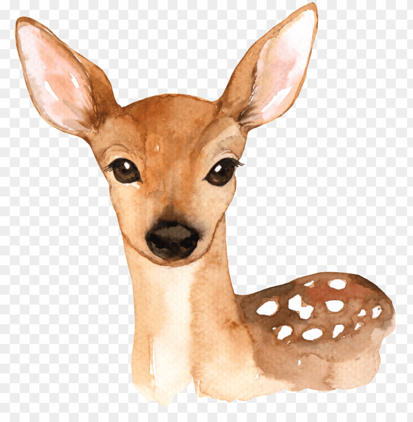 free PNG hand painted a cute deer png transparent - woodland animals printables free PNG image with transparent background PNG images transparent