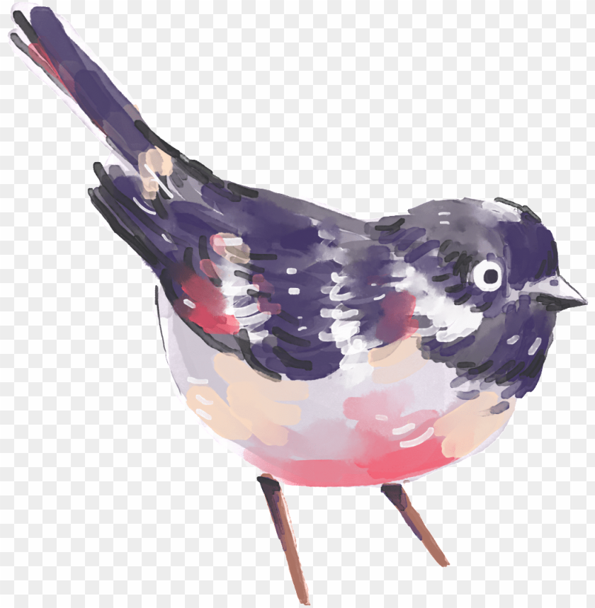 free PNG hand painted a painting bird png transparent - watercolor transparent floral wreath PNG image with transparent background PNG images transparent