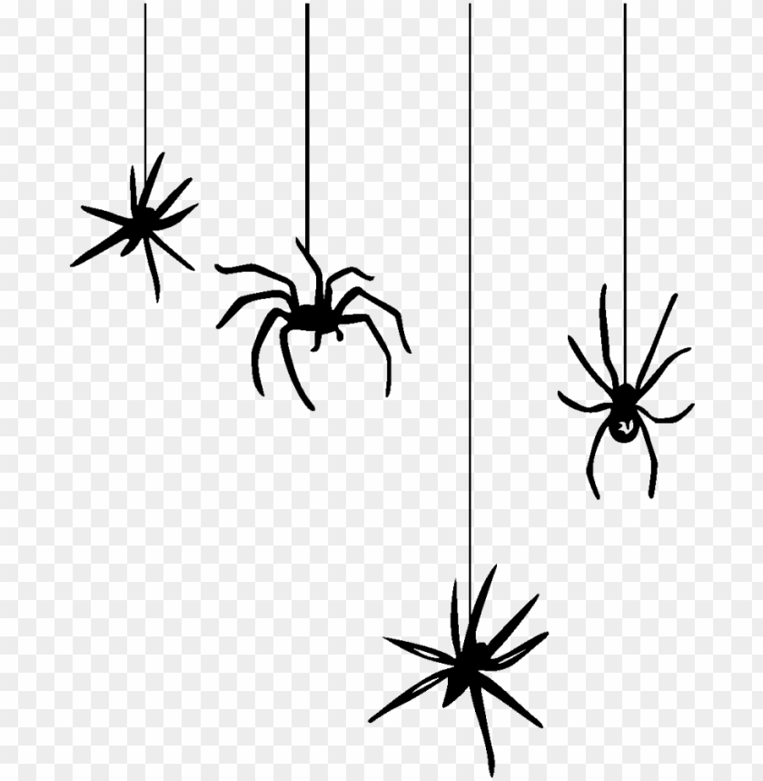 Hanging Spider Png Spiders Halloween Png Image With Transparent Background Toppng Large collections of hd transparent spider png images for free download. hanging spider png spiders halloween