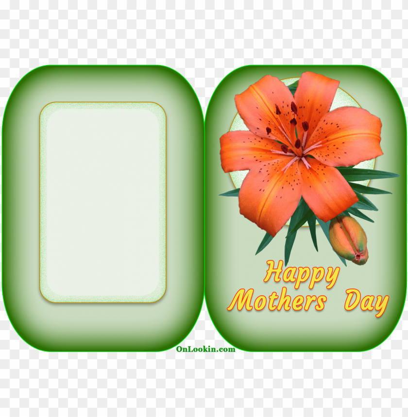 free PNG happy mothers day tiger lily flower - happy mothers flower cards PNG image with transparent background PNG images transparent