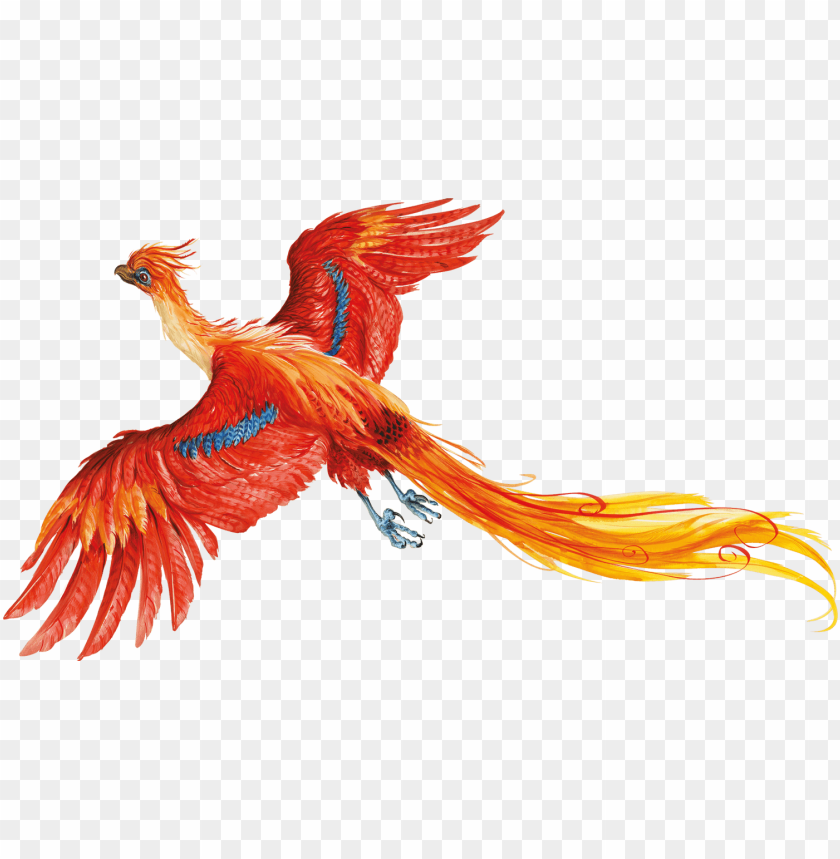 free PNG harry potter - harry potter and the chamber of secrets illustrations PNG image with transparent background PNG images transparent