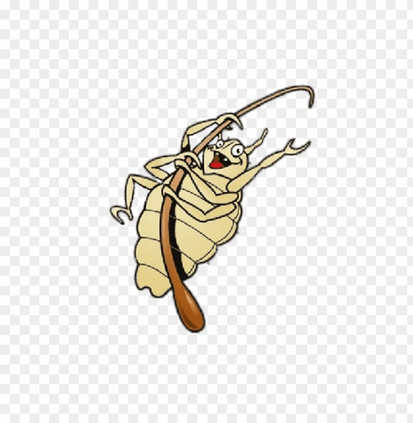 free PNG Download head louse fun illustration png images background PNG images transparent