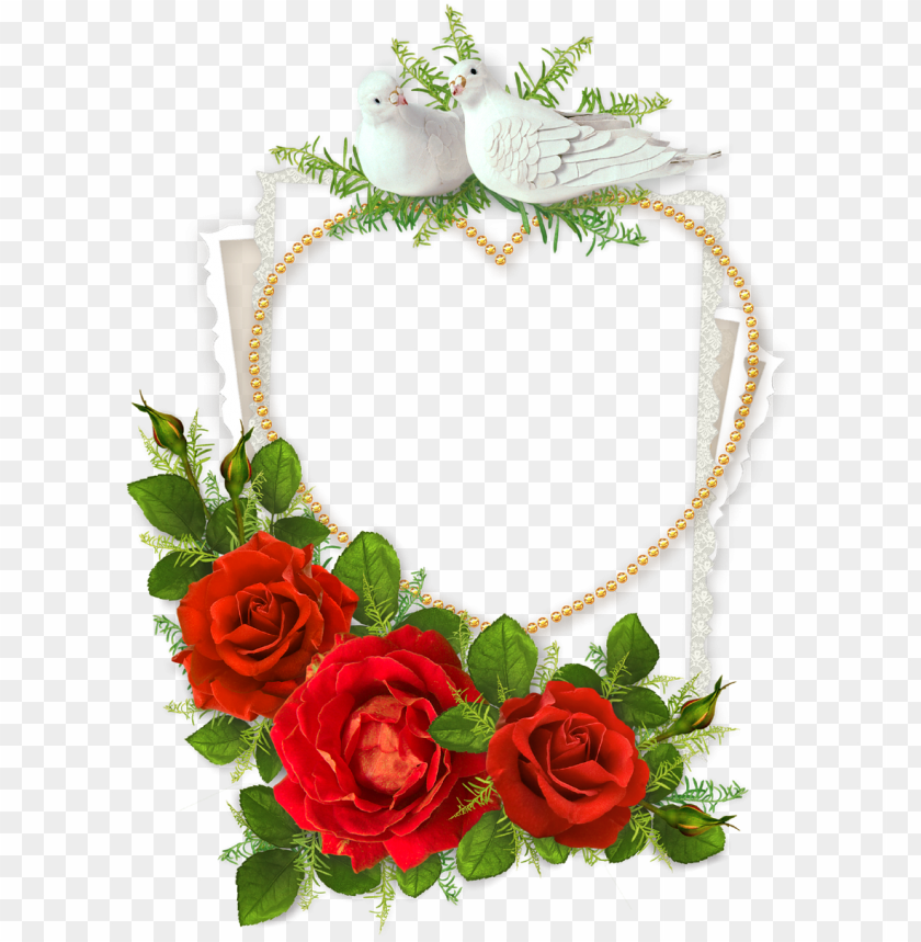 free PNG heart shaped photo frame with doves and red - wedding heart shaped photo frame PNG image with transparent background PNG images transparent