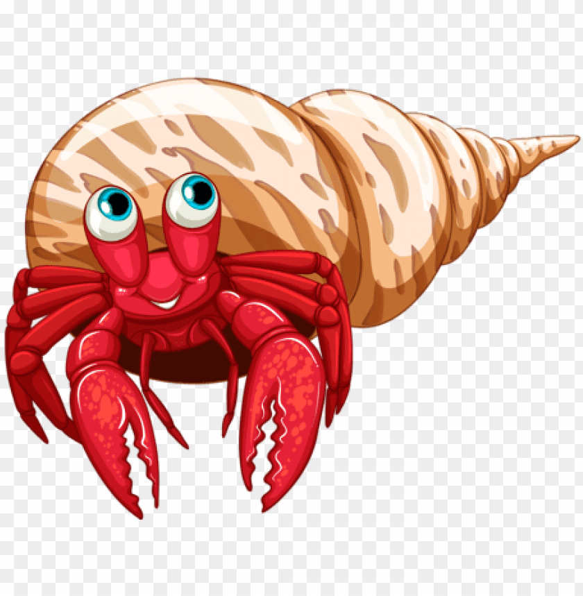 free PNG hermit crab clipart sea creature - dibujos de cangrejos ermitaños PNG image with transparent background PNG images transparent