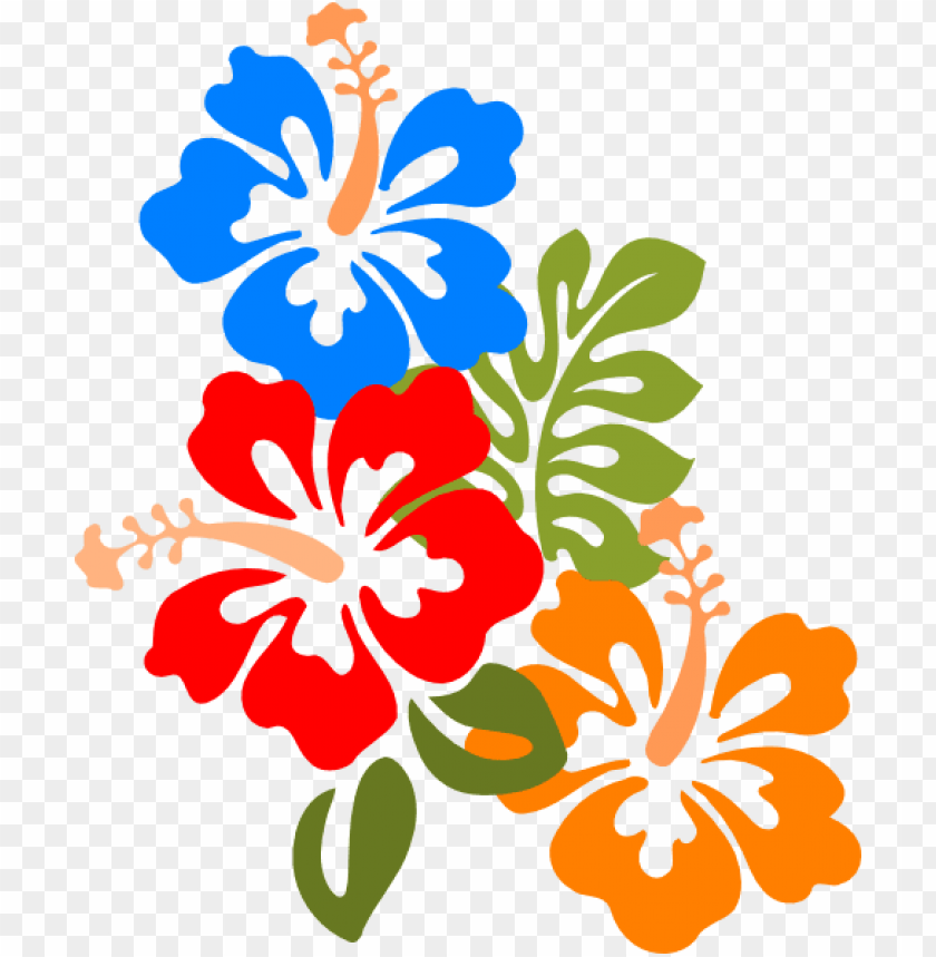 free PNG hibiscus svg clip arts 492 x 595 px PNG image with transparent background PNG images transparent
