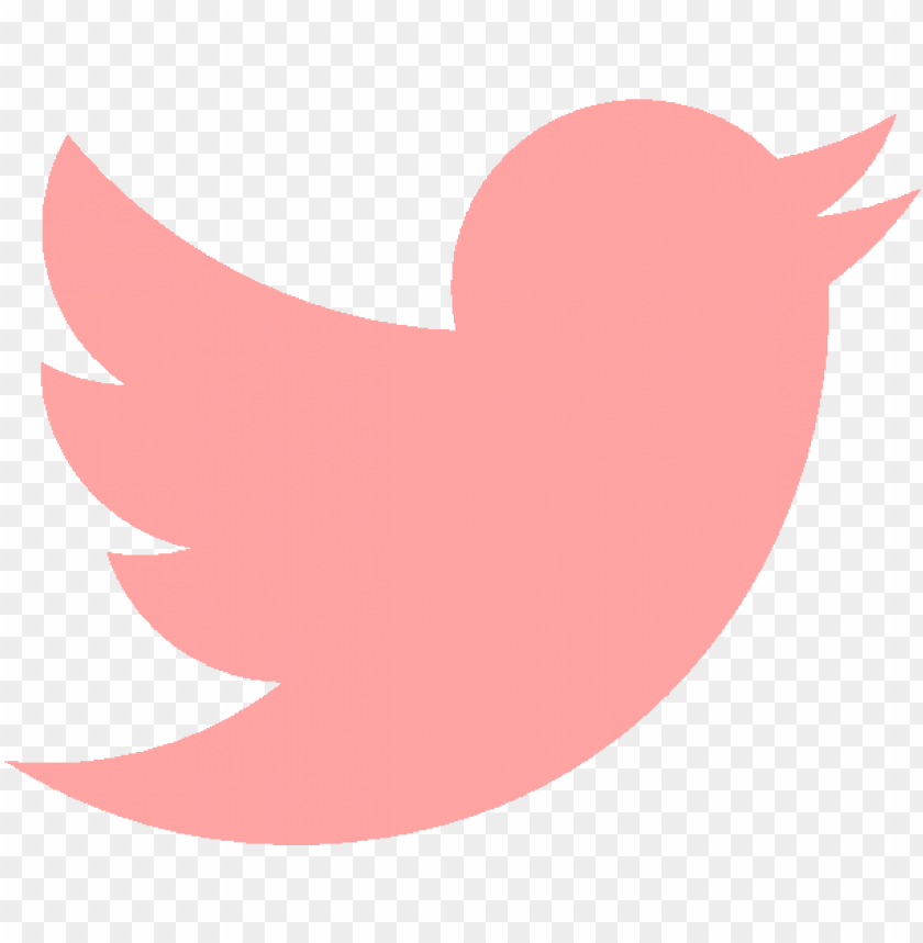 free PNG homepage icon twitter - pink twitter icon png - Free PNG Images PNG images transparent