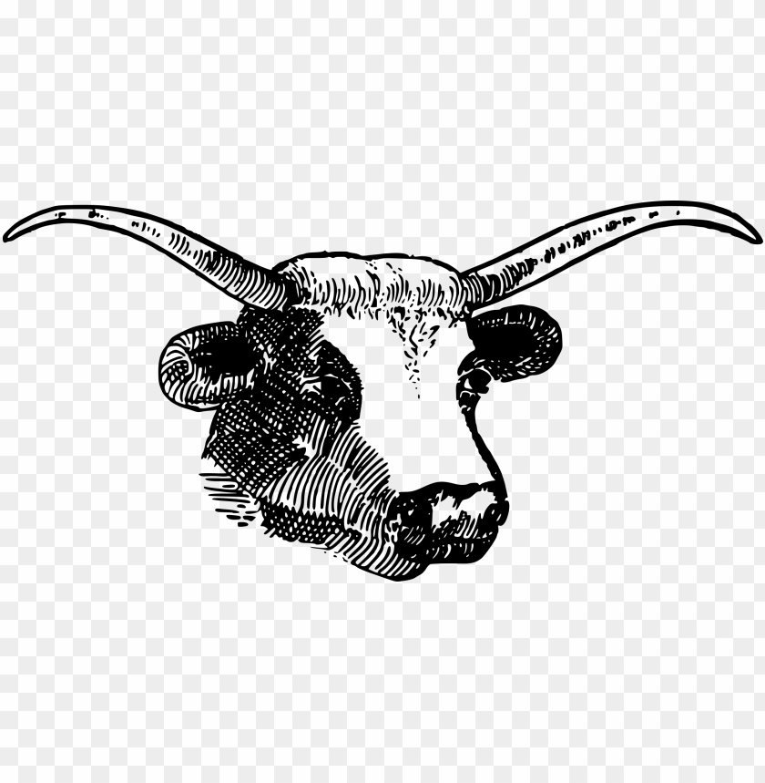 free PNG horns PNG image with transparent background PNG images transparent