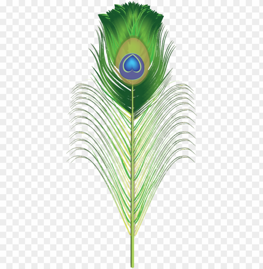 free PNG hotoshop clipart blue feather - peacock feather clipart PNG image with transparent background PNG images transparent