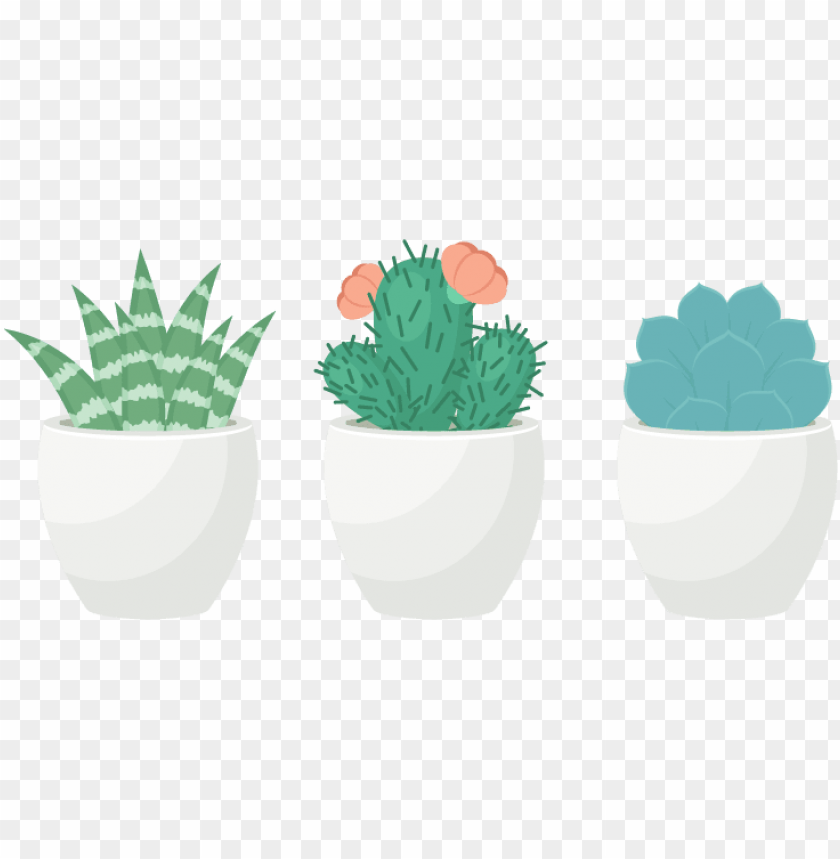 free PNG how to create a trio of succulents in adobe illustrator - transparent background succulent clip art PNG image with transparent background PNG images transparent