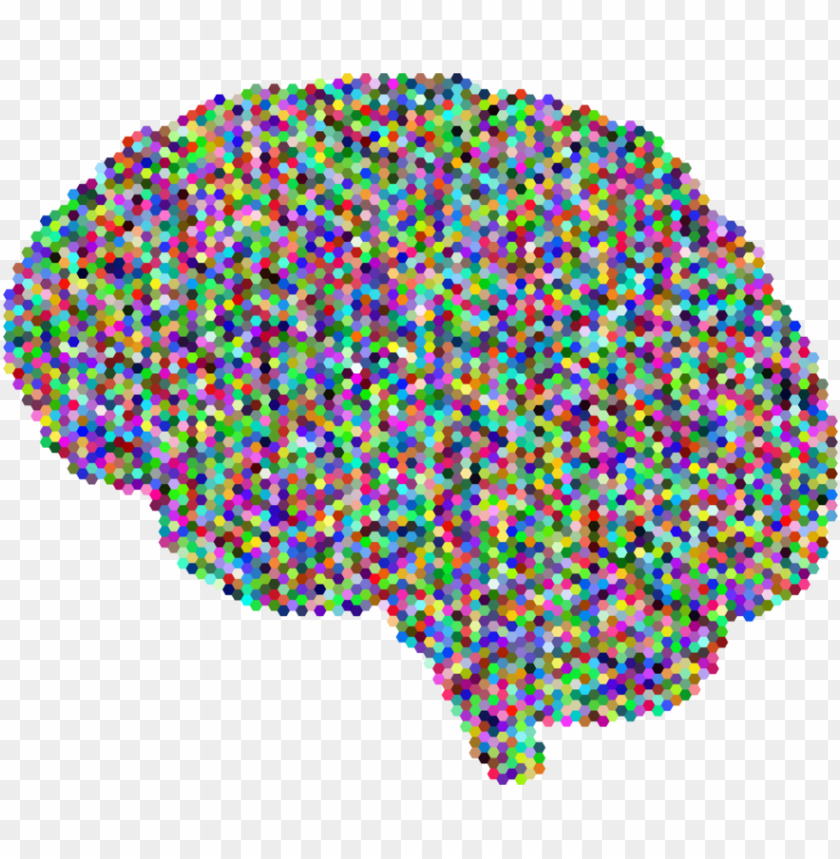 free PNG human brain computer icons drawing skull - colorful brain no background PNG image with transparent background PNG images transparent