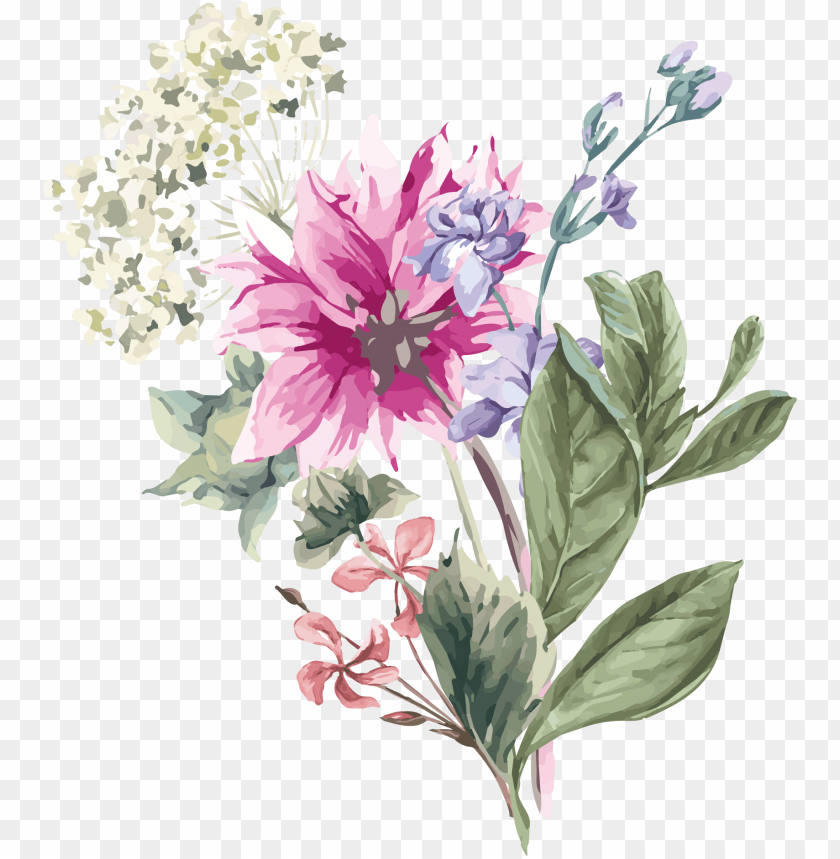 free PNG hydrangea flower stock illustration illustration - spring flowers paint PNG image with transparent background PNG images transparent