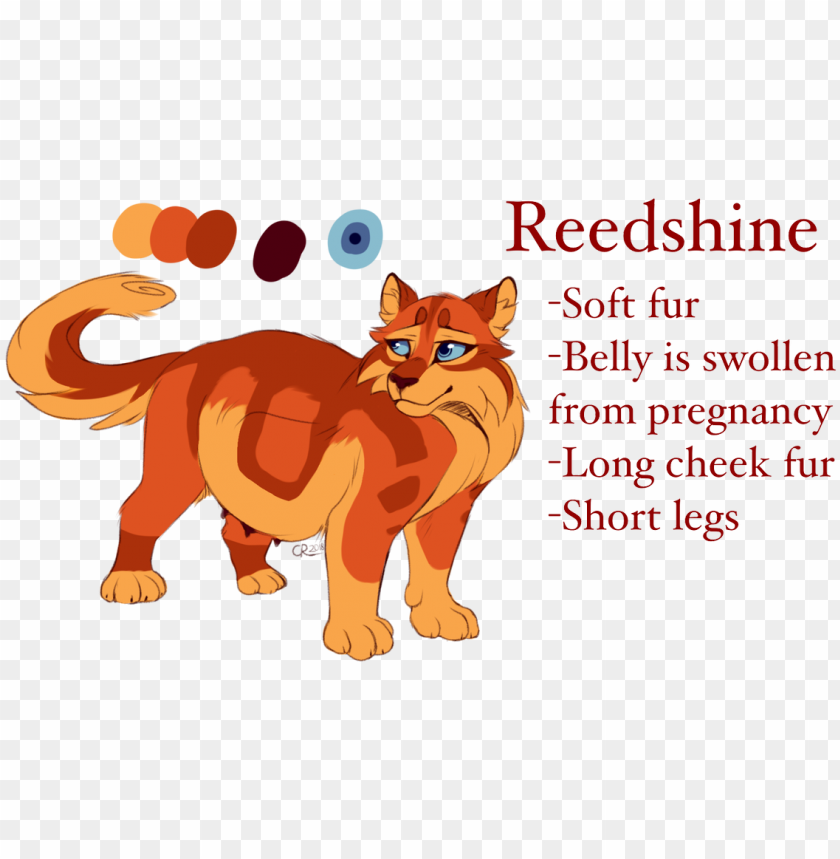 free PNG i know mapleshade's considered overused but - readability PNG image with transparent background PNG images transparent