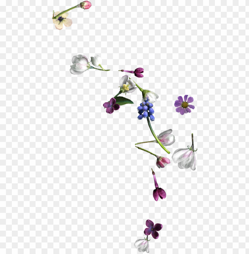 free PNG i made a few things this week, including a couple of - artificial flower PNG image with transparent background PNG images transparent