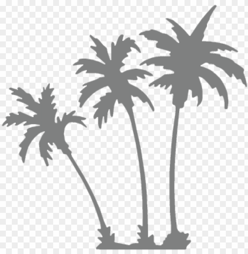 free PNG icons palm trees grey - grey palm tree PNG image with transparent background PNG images transparent