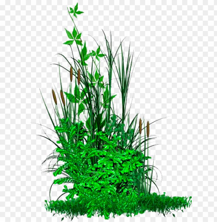 free PNG icsart editing png picsart hd png picsart all editing - florido arbustos em PNG image with transparent background PNG images transparent