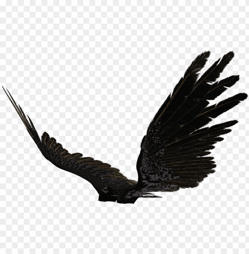 free PNG icture of dark angel wings allofpicts - black angel wings side view PNG image with transparent background PNG images transparent
