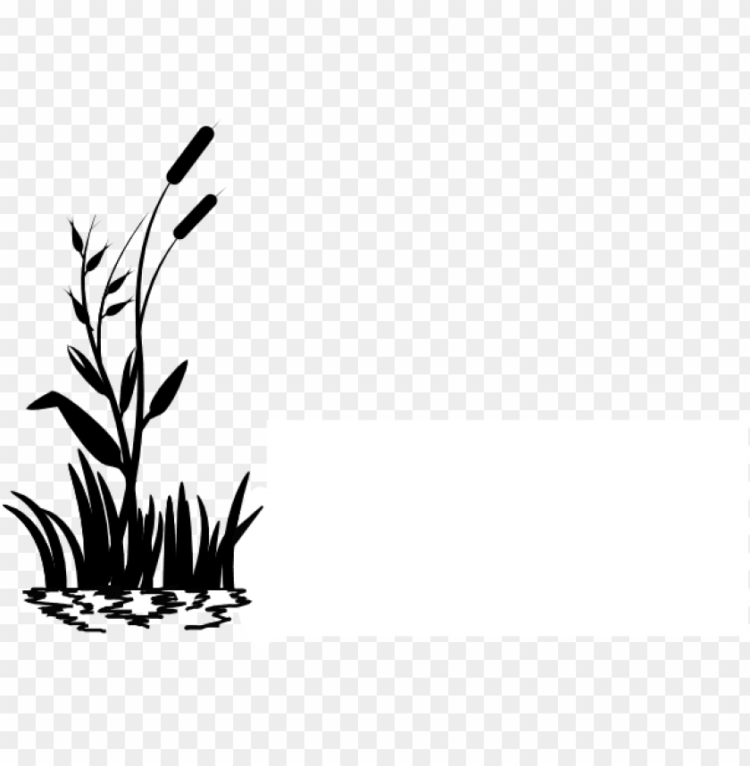 free PNG icture royalty free stock cattail clip art at clker - grass clip art black and white PNG image with transparent background PNG images transparent