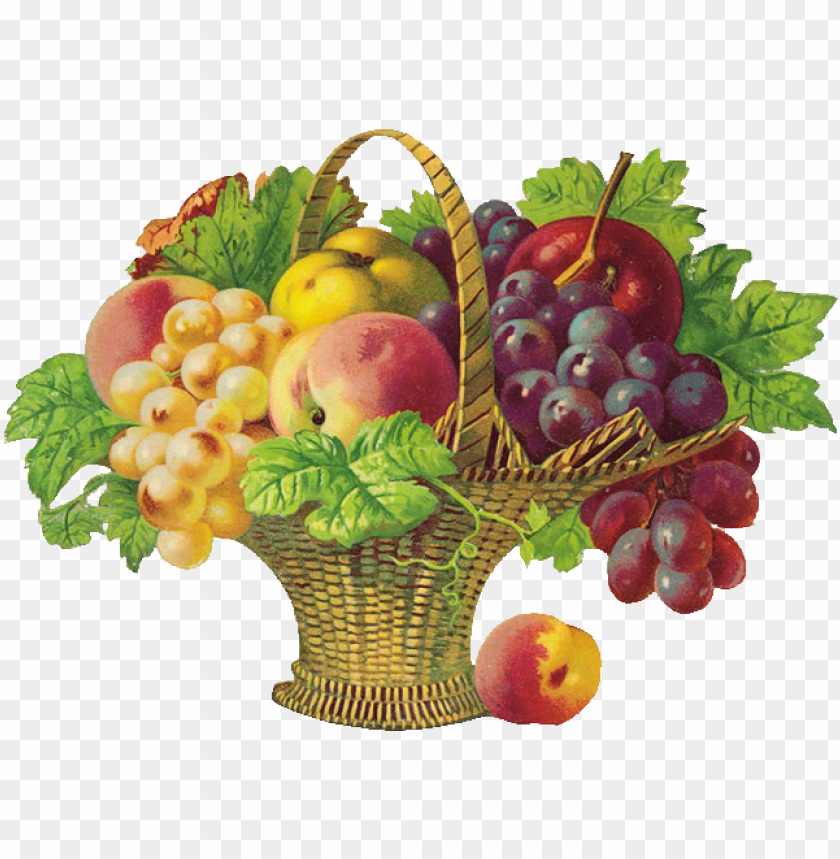 free PNG icture transparent stock basket of png d coupage fruits - get well soon fruits PNG image with transparent background PNG images transparent