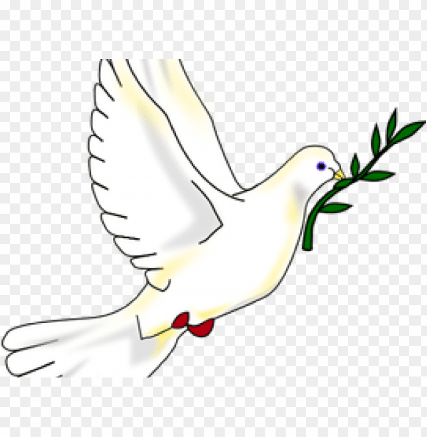 free PNG igeon clipart jesus - doves peaces PNG image with transparent background PNG images transparent