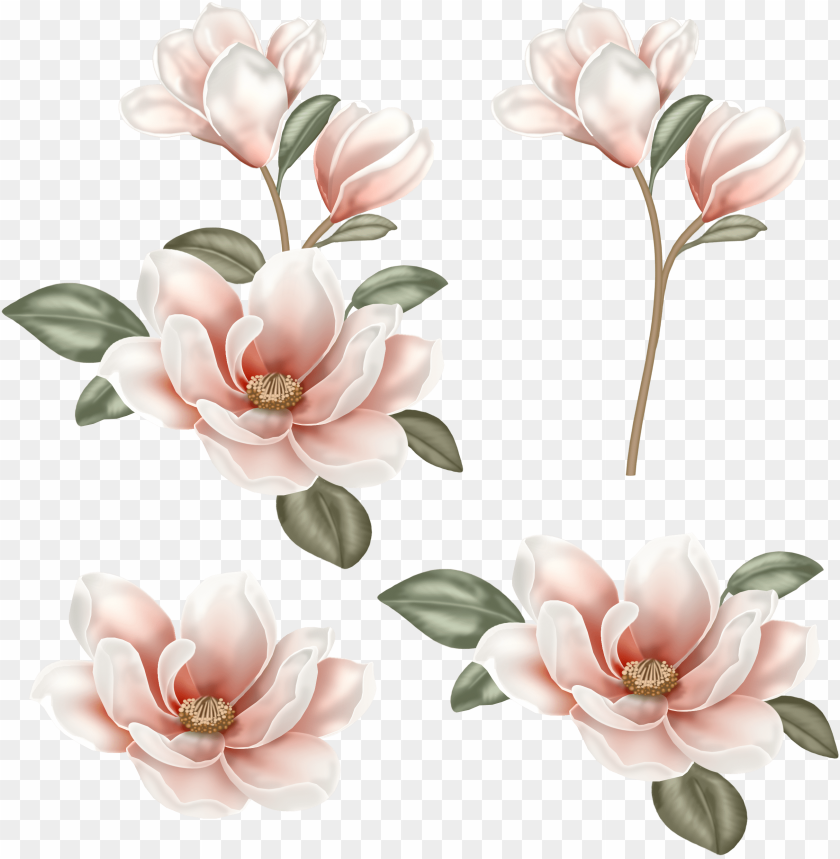 free PNG image freeuse stock flower clip art chinese transprent - flower painting PNG image with transparent background PNG images transparent