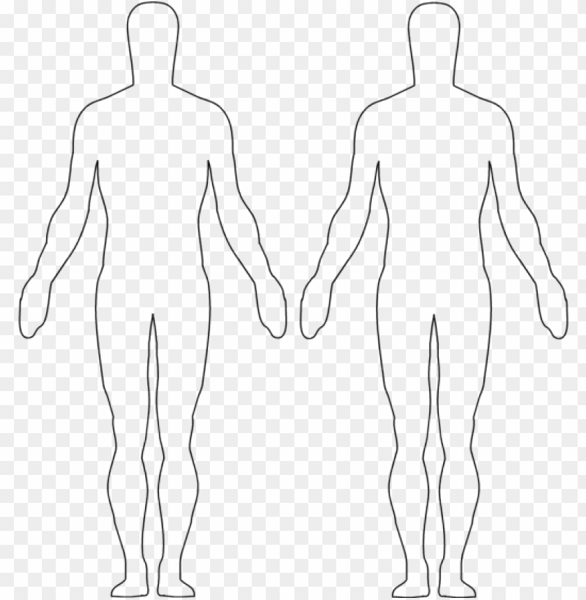 free PNG image result for body outline body outline, outlines, - figure drawi PNG image with transparent background PNG images transparent