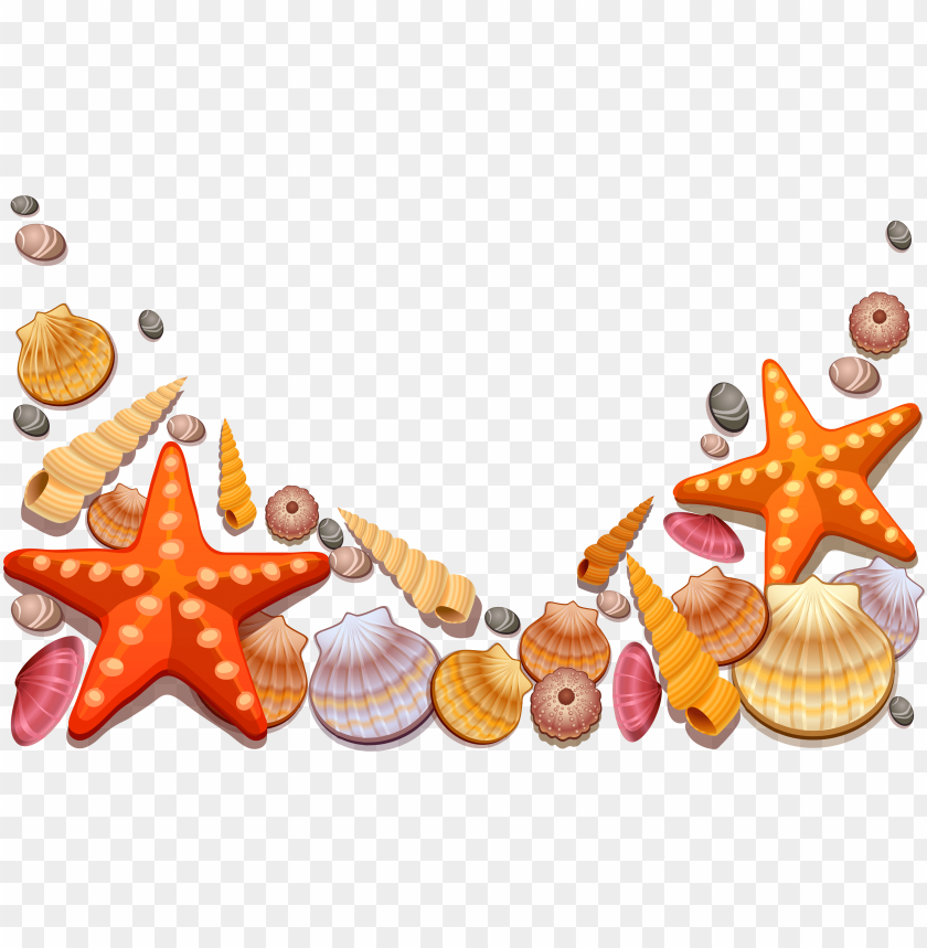 free PNG image royalty free library colorful seashell clipart - sea shells shower curtai PNG image with transparent background PNG images transparent