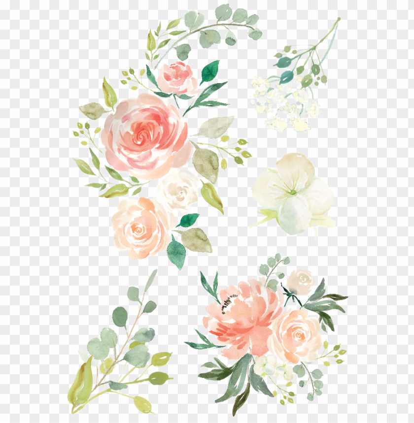 free PNG image watercolor animal jam clip freeuse download - hand drawn flowers PNG image with transparent background PNG images transparent
