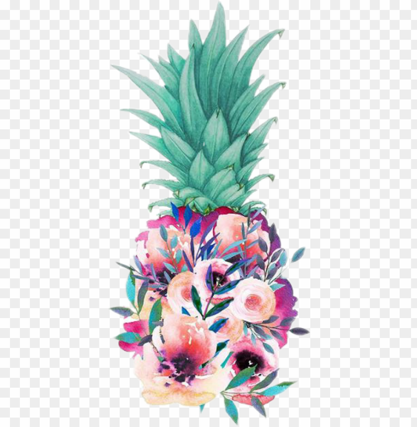 free PNG ineapple tropical drawing art flowers - floral pineapple PNG image with transparent background PNG images transparent