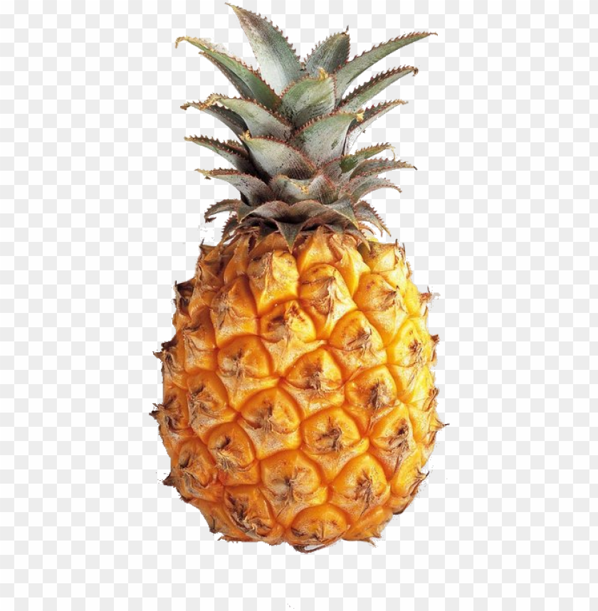 free PNG ineapple tumblr theme download transparent pineapple - pineapple transparents PNG image with transparent background PNG images transparent
