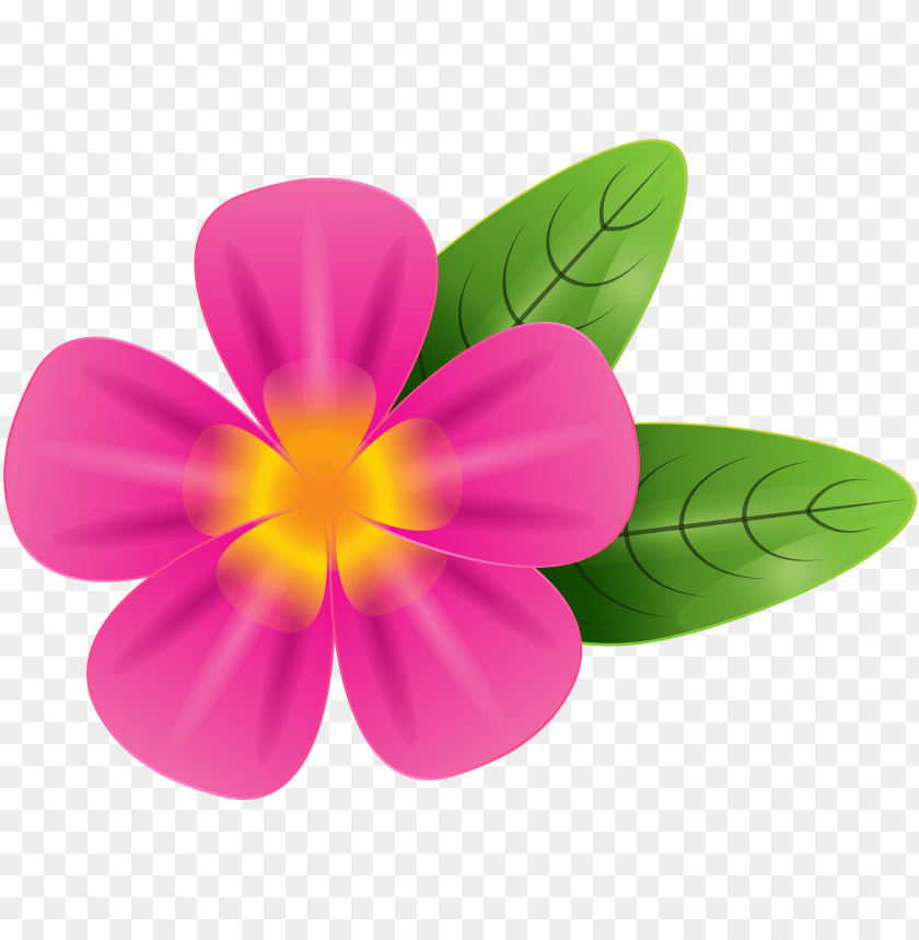 free PNG ink vector tropical flowers seamless pattern - frangipani clipart PNG image with transparent background PNG images transparent